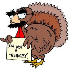 Image result for images of turkeys