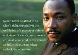 Quote of the Day: Martin Luther King, Again | James Preller's Blog via Relatably.com