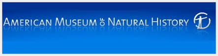 Image result for american museum of natural history logo