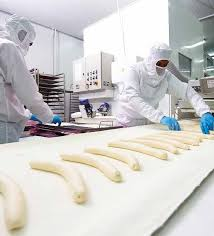 Image result for envictus international food processing