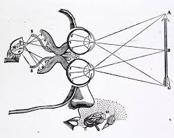 medical   diagram   descartes  vision and visual perception    medical   diagram   descartes  vision and visual perception