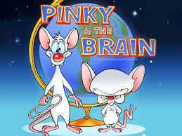pinky and the brain why ed pinky and the brain