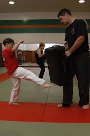 Image result for practice karate with parent