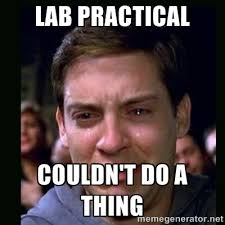 Lab Practical couldn't do a thing - crying peter parker | Meme ... via Relatably.com