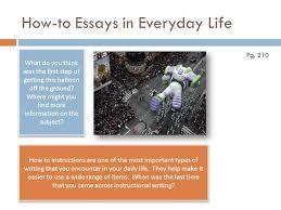 persuasive essay on animal cruelty   essay writing service    persuasive essay on animal cruelty jpg