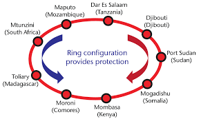 network is a two fibre pair system and is the only sub saharan submarine system based on a collapsed ring architecture which provides a high degree of
