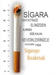 Tütün Sektörü'nin Bilinmeyenleri