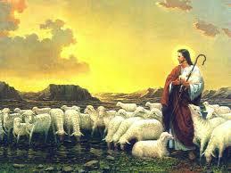 Resultado de imagem para domingo do bom pastor