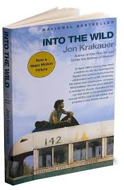 essay topics for into the wild