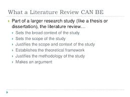 example of a literature review essay