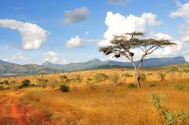 Image result for south african scenery
