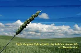Image result for Fight the good fight of faith