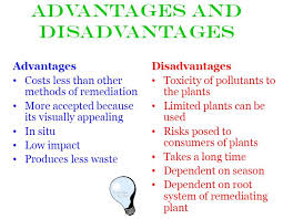 advantage and disadvantage of new technology essay   essaywhat are some disadvantages to technology in modern