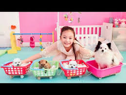 Family of Pet Routine with <b>Bug</b> - YouTube