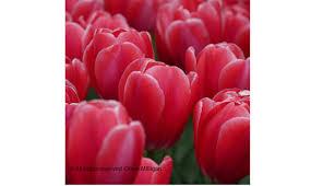 digital photo academy photography workshops 01234567891011121314151617181920