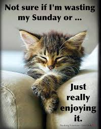 Image result for have a funday sunday