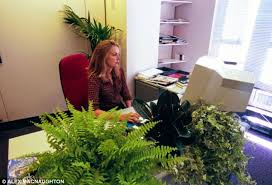 More Greenery When Plants Were Introduced Staff Concentration And Satisfaction Increased They Said  E