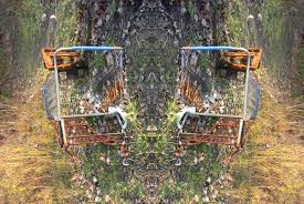 serif of nottingblog shopping cart pastorals a nature poem shopping cart pastorals a nature poem essays in the goose
