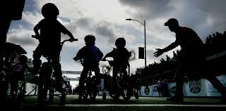 Image result for young riders shadow