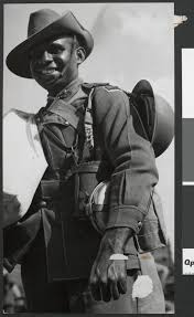 Image result for Image of Indigenous Anzacs