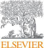 Biological flora of Central Europe: Solidago altissima L ...