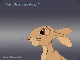 Image result for watership down fiver