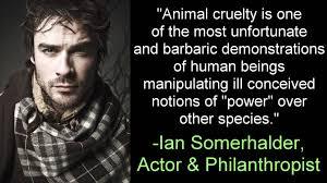 Against Animal Rights Quotes. QuotesGram