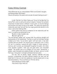 examples of creative writing essays essay about yourself essays    cover letter examples of creative writing essays essay about yourself essayscreative essay example