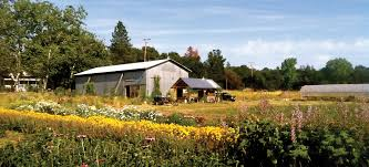 when neighbors spray herbicides next to your organic crop high the writer s organic farm in the foothills of northern california