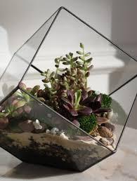 Декор для дома - Venera Flower Shop