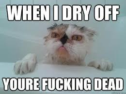 Pissed off ugly cat memes | quickmeme via Relatably.com