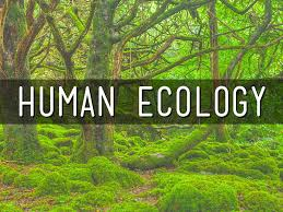 essay on human ecology