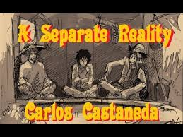 <b>A SEPARATE REALITY</b> - YouTube