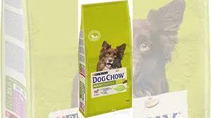<b>Сухой корм Purina Dog</b> Chow 14 кг купить в Свердловской ...