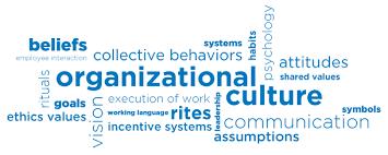 essay about organisational culture define   homework for you  essay about organisational culture define   image