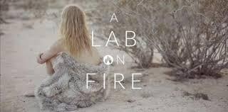 <b>A Lab on Fire</b> – LKNU