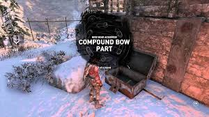 Image result for rise of the tomb raider bow