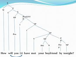tree diagrams wh question