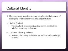 cultural identity definition essay outline   essay for you cultural identity definition essay outline   image