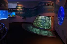 discovery world in milwaukee wisconsin reiman aquarium discovery world in milwaukee wisconsin reiman aquarium