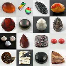 <b>Organic</b> Gemstones: Amber, pearl, jet, dinosaur bone and more!