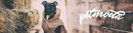 Выкройки одежды для собак, <b>шьём</b> сами | ВКонтакте