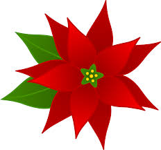 Free Christmas Poinsettia Pictures, Download Free Clip Art, Free ...