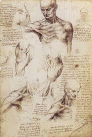 17 best ideas about da vinci painting leonardo da leonardo da vinci art and science understanding the nature of light