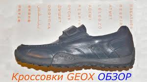ОНЛАЙН ТРЕЙД.РУ — <b>Кроссовки GEOX</b> J9309B00043C4002 для ...