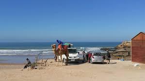 <b>surf bus</b> with camel - Picture of Pro Surf Morocco, Agadir - Tripadvisor