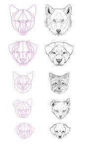 <b>dog</b> drawing art <b>animals wolf</b> draw <b>animal</b> Anatomy <b>wolves dogs pet</b> ...