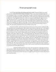 paragraph essay paragraphessayformatpng three paragraph essay paragraphessayformatpng three paragraph essay by xuyuzhu business