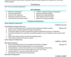 breakupus splendid best resume format the ultimate guide to pdf vs breakupus handsome unforgettable direct support professional resume examples to stand delectable direct support professional resume