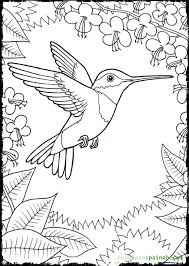 Small Picture Humming Coloring Pages Coloring Coloring Pages